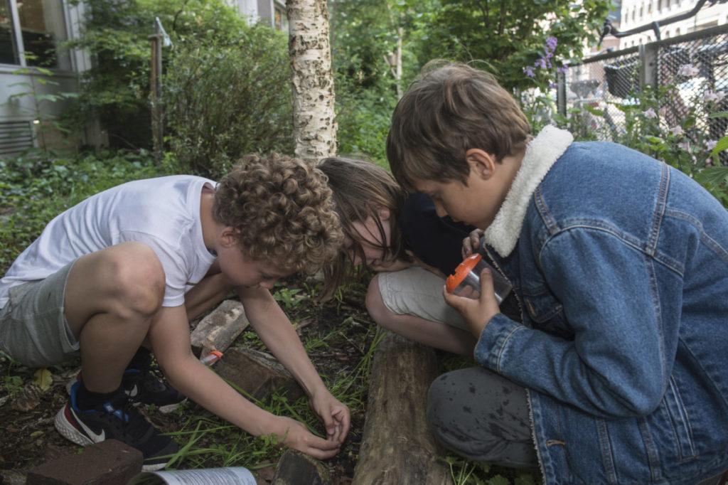 NatuurLab Seth Max en Hugo (3)